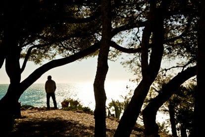 En la costa Daurada los pinos retorcidos llegan hasta la orilla del mar