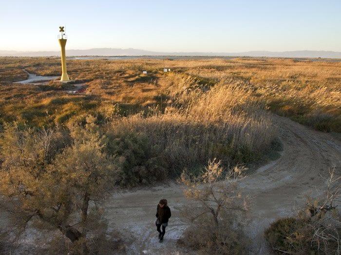 Rincón del Delta del Ebro